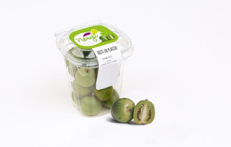 La saison vient de s'ouvrir pour le Nergi, le mini kiwi, qui vise entre autres le snacking