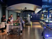Lactalis lance sa 5e collection Fromages et Chefs