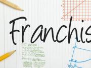 véronique discours buhot fédération francaise de la franchise