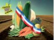 D'aucy lance le légume 100% cultivé en France pour la RHF