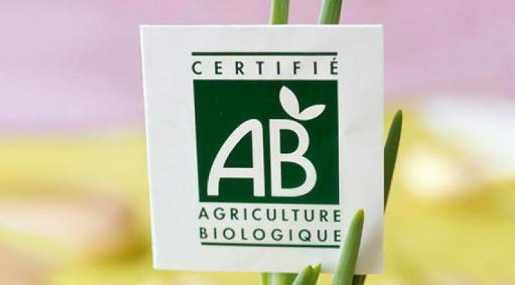 Le plan Ambition Bio 2022 du gouvernement devrait booster les produits bio en restauration