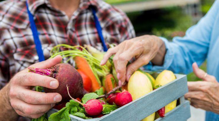 étude nielsen habitudes alimentaires français flexitarisme
