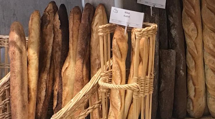 Ifop FEB étude pains durant la pandémie du corona virus
