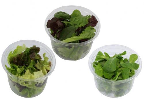 Gamme de salades individuelles