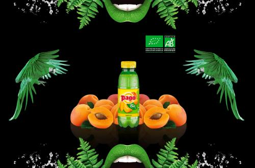 Pago Abricot Bio 33 cl