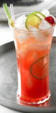 Cranberry et citron Spritzer